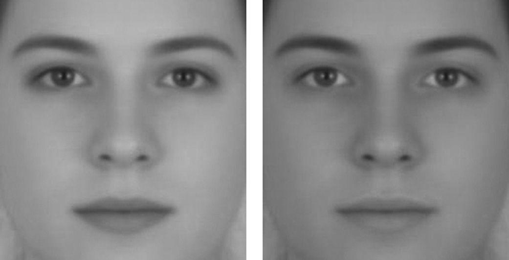 Cómo percibimos el género según el contraste de la piel
