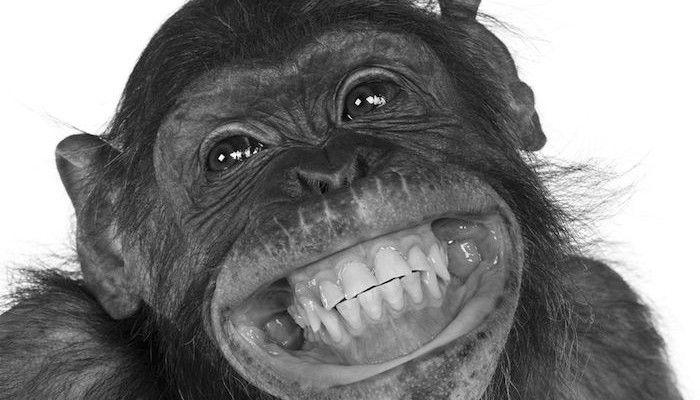 Los beneficios de sonreír